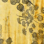 Judith Bowerman, Foeniculum Umbels III, polyester plate lithography and monotype on wood substrate.